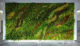 Duggal Greenhouse BK Navy Yard Plant Wall Design